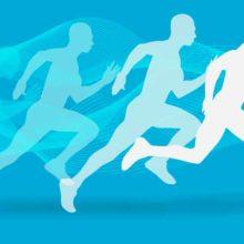 Кто любит спорт, тот здоров и бодр. Пословицы и поговорки о спорте для детей