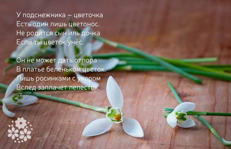 стихи про подснежник и весну