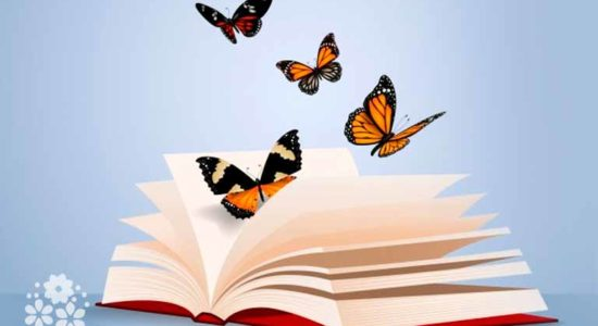 Яркие как лампочки порхают в небе бабочки. Загадки про бабочку для детей