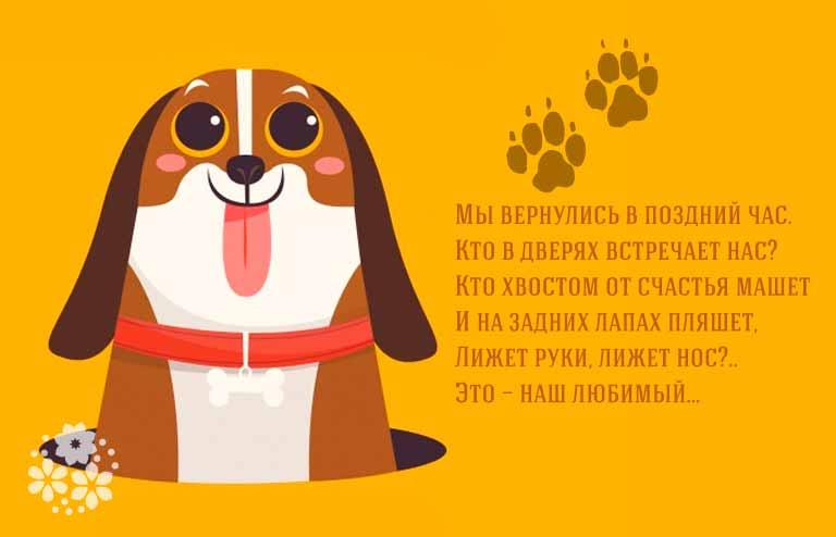 загадки про собак с ответами