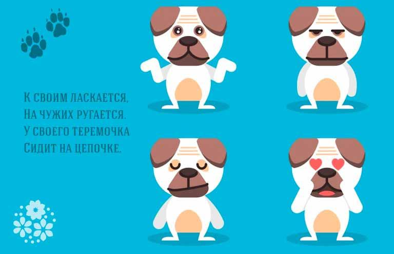 загадки про породы собак