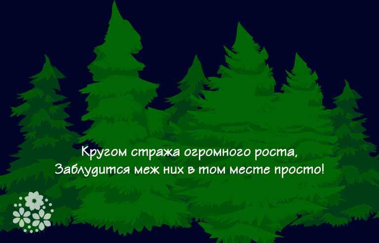 загадки о лесе для детей