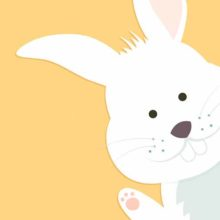 Лесной красавец ушастый заяц. Загадки про зайца для детей