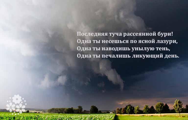 стихи о лете русских поэтов 19 века