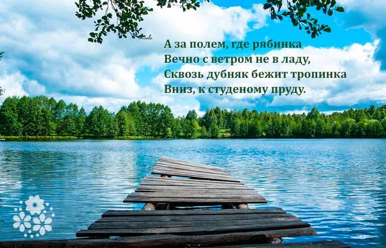стихи про лето русских поэтов