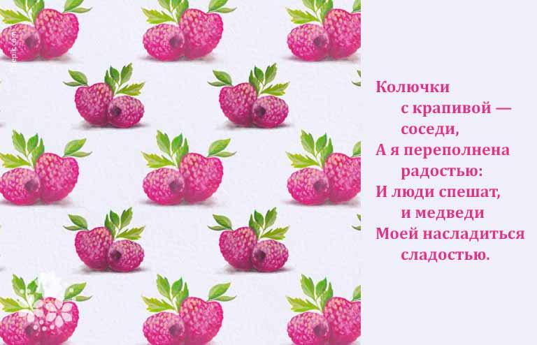 загадки о ягодах