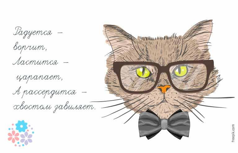 загадка о кошке для детей