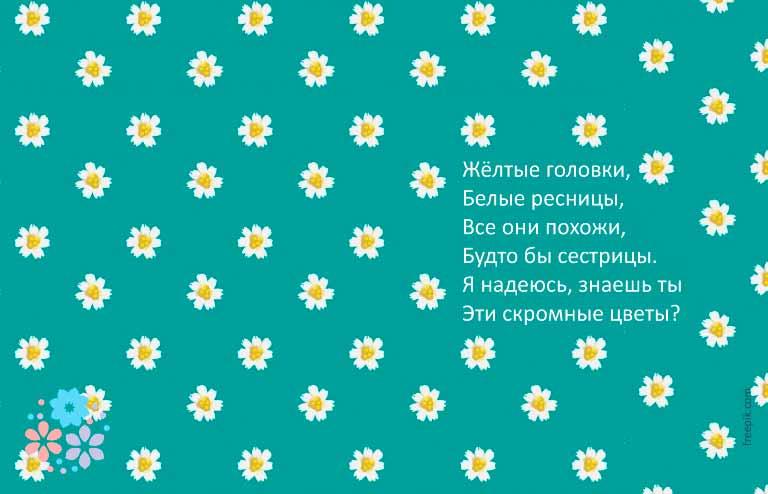 загадка про клумбу с цветами