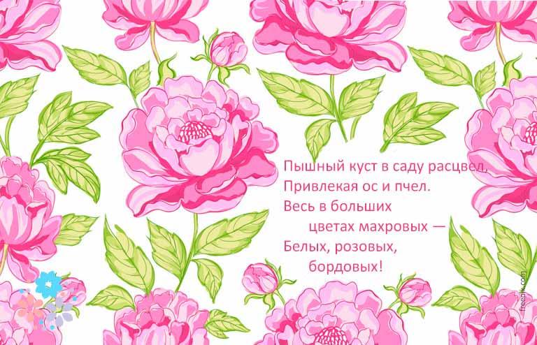 загадки про цветы для детей 7 лет с ответами
