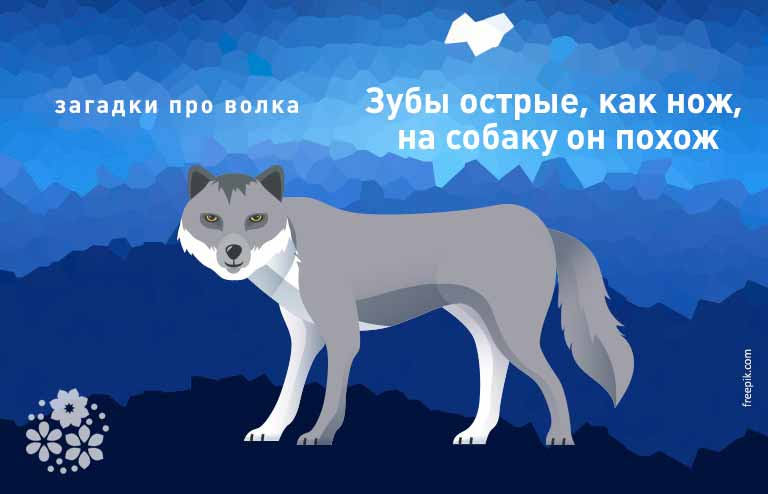 загадка про волка