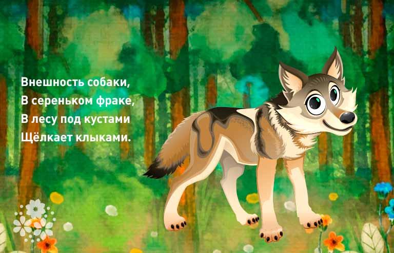 загадки про волка для детей 7-8 лет