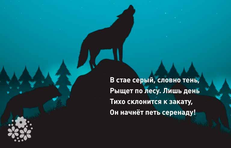 загадки про волка для детей 3-4 лет короткие