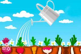 Наш зеленый огород нас прокормит целый год. Загадки про овощи для детей