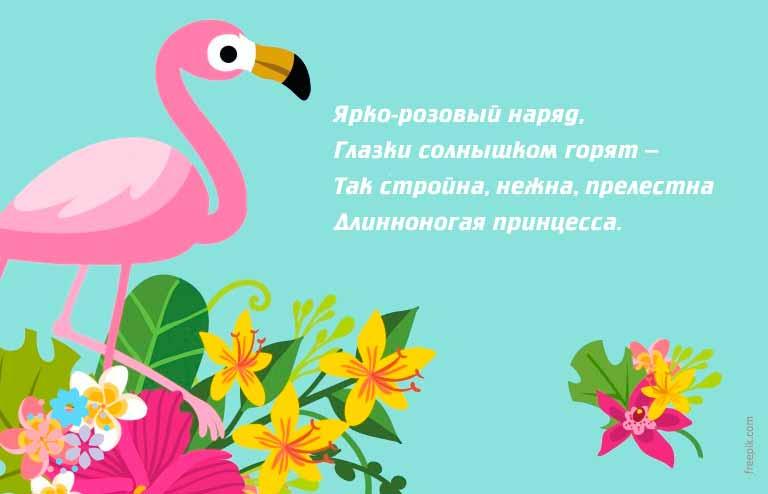 Загадки о домашних и перелётных птицах