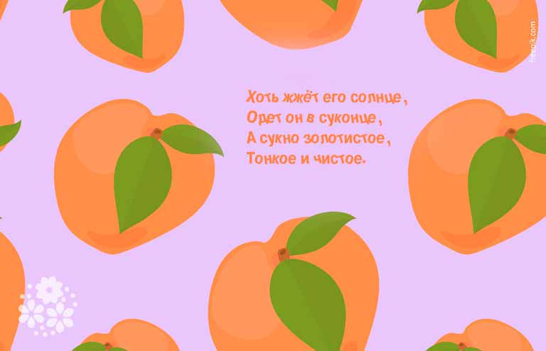 загадки про фрукты для детей с ответами
