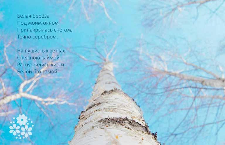 Стихи Пушкина о природе для дошкольников