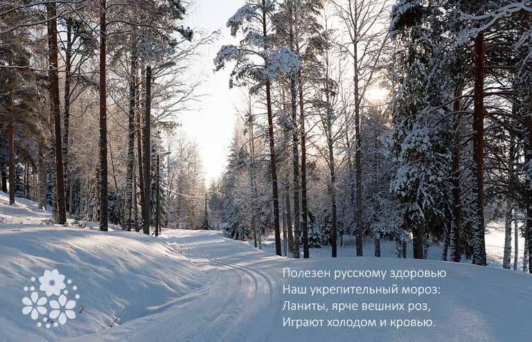 Стихи Пушкина про природу для 5-6 классов
