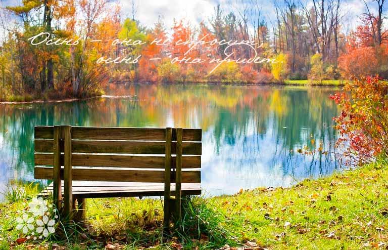 Красивые душевные стихи про осень