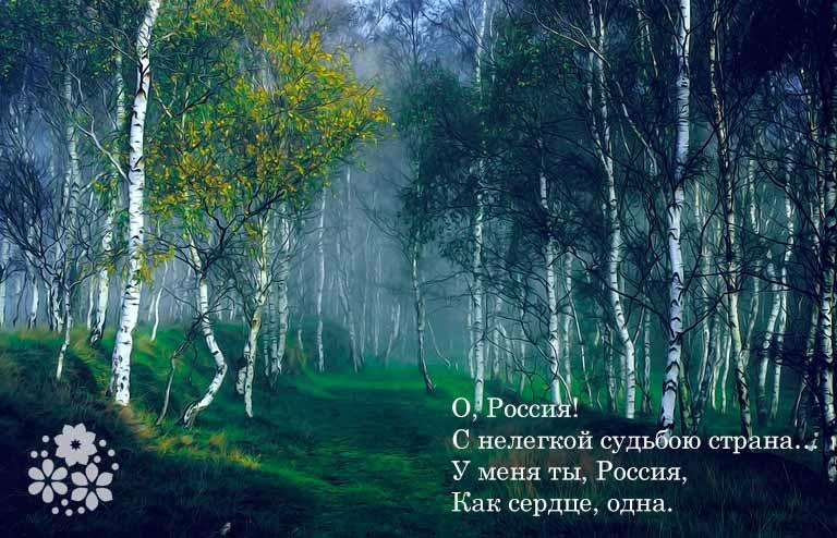 Короткие и красивые стихи о России