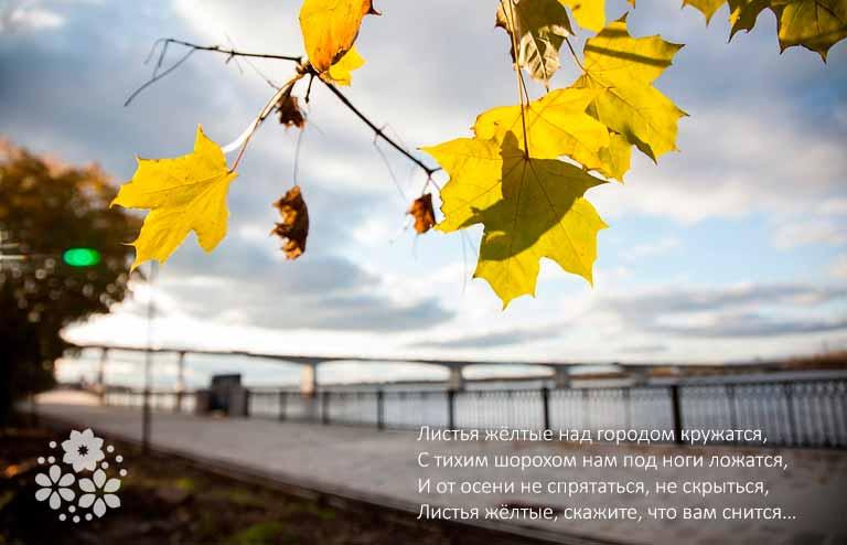 Фразы про осень из старых песен