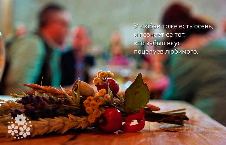 Цитаты афоризмы про осень и любовь из книг и фильмов