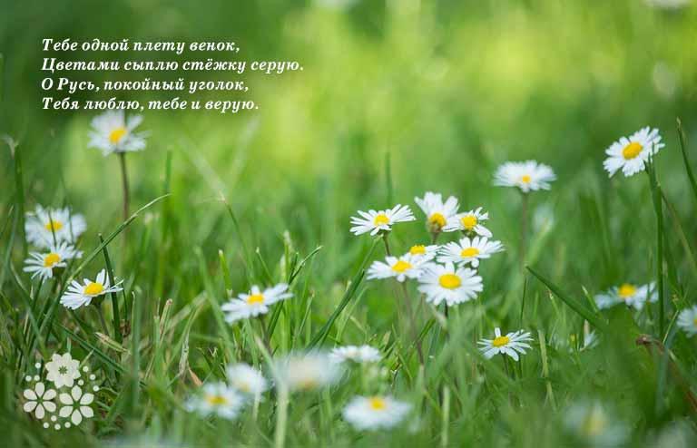 Короткие, красивые стихи Сергея Есенина о Родине