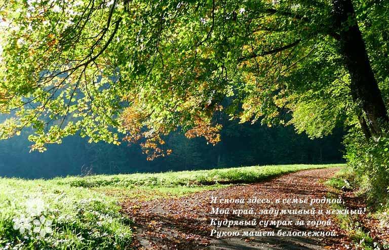 Стихи Есенина о Родине