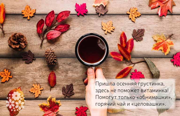 Короткие, смешные цитаты и афоризмы про осень в прозе