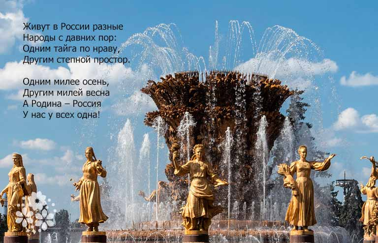 Прикольные стихи на День единства России