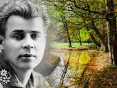 На природу не смотрят, ею любуются… Стихи Есенина о природе