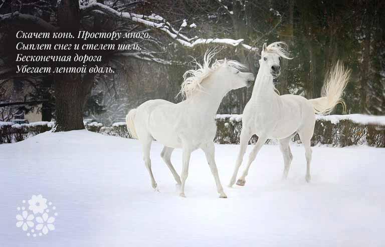 природа в стихотворениях Есенина