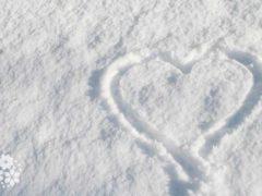 Ах, зимняя сказка, как ты хороша! Цитаты и афоризмы про зиму