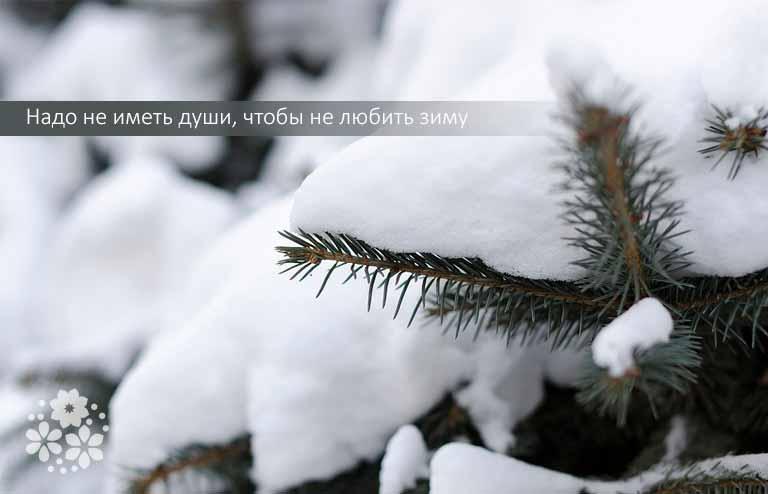 Цитаты про зиму короткие и красивые