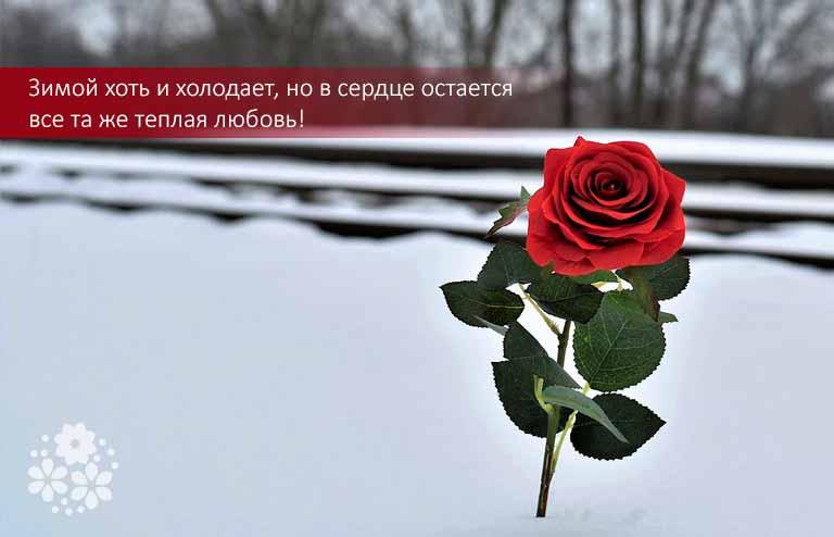 Красивые цитаты про зиму и любовь