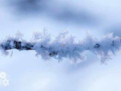 Здравствуй, матушка–Зима! Красивые стихи про зиму