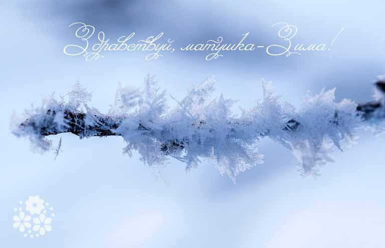 Красивые стихи про зиму