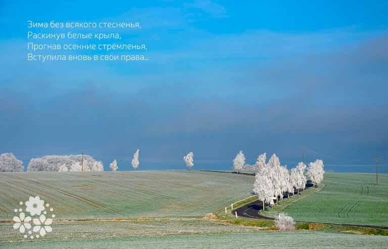 Стихи про начало зимы