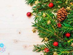 Ёлка пахнет Новым годом! Стихи про ёлку для детей