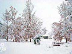 Здравствуй, гостья-Зима! Просим милости к нам… Стихи про зиму русских поэтов