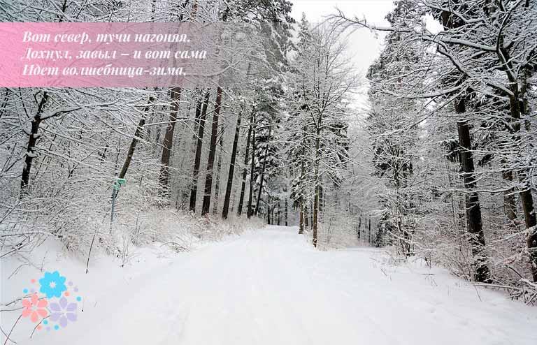 Стихи про зиму русских поэтов-классиков для детей 1-2 класса