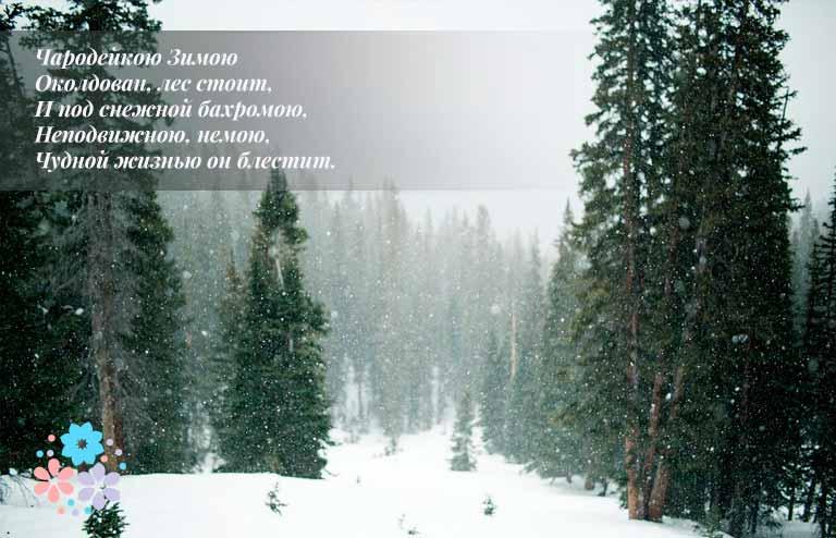 Стихи про зиму известных русских поэтов