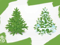Зимой и летом одним цветом… Загадки про елку
