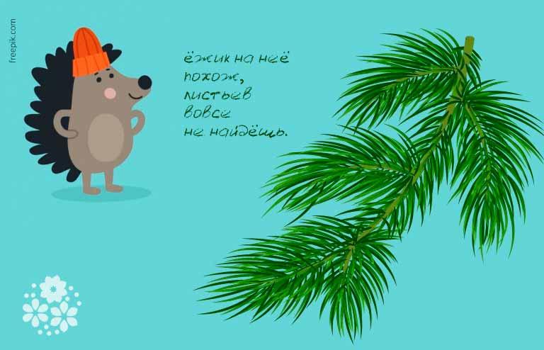 Простые короткие загадки про елку