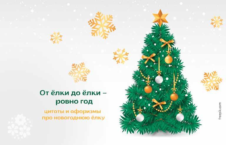 Цитаты и афоризмы про новогоднюю ёлку