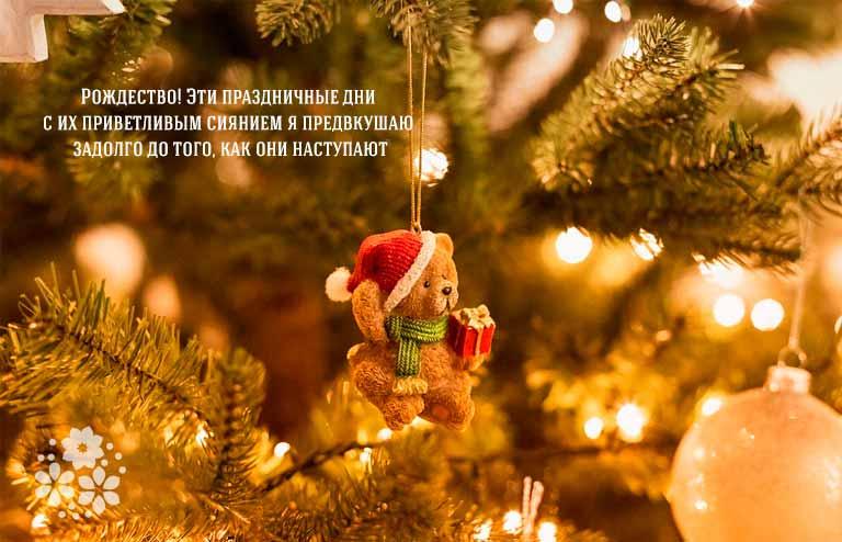 Цитаты про Рождество и Новый год