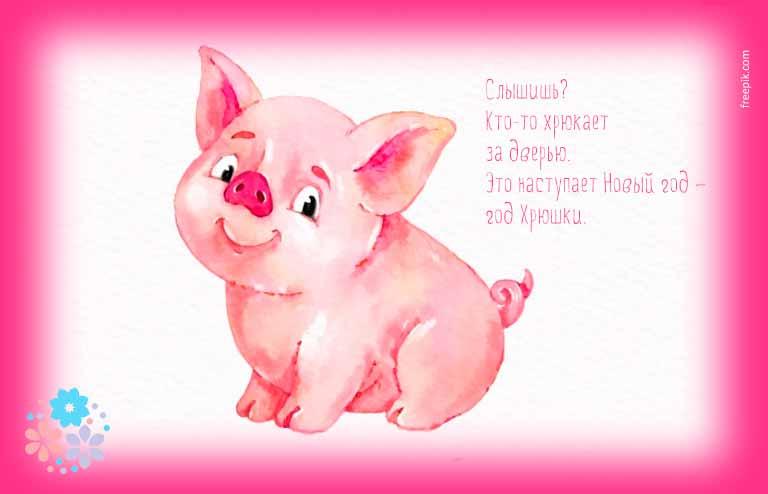 Поздравление с новым годом Свиньи 2019 в прозе
