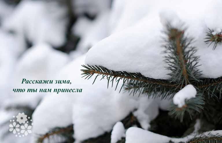 Приметы зимы для детей
