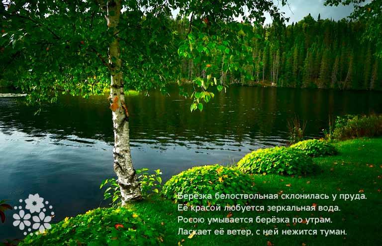 Стихи о русской природе для детей 4-5 класса