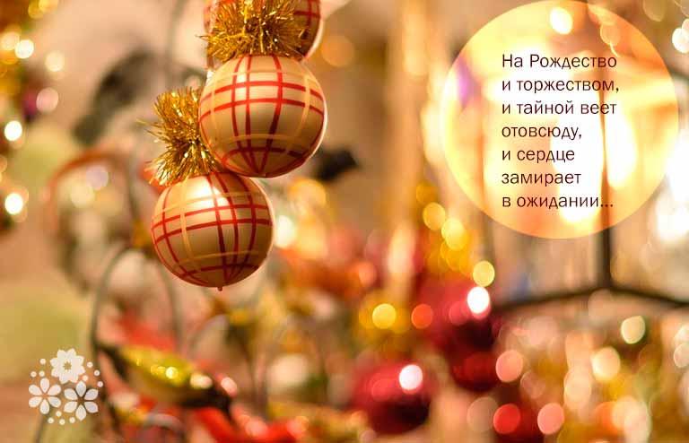 Загадки про Рождество и Новый год