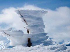 Налетит на землю вдруг белый вихрь из белых мух… Загадки про метель и вьюгу для детей